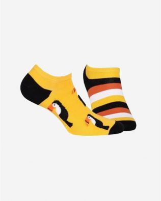 Skarpetki – tukan, paski, żółte